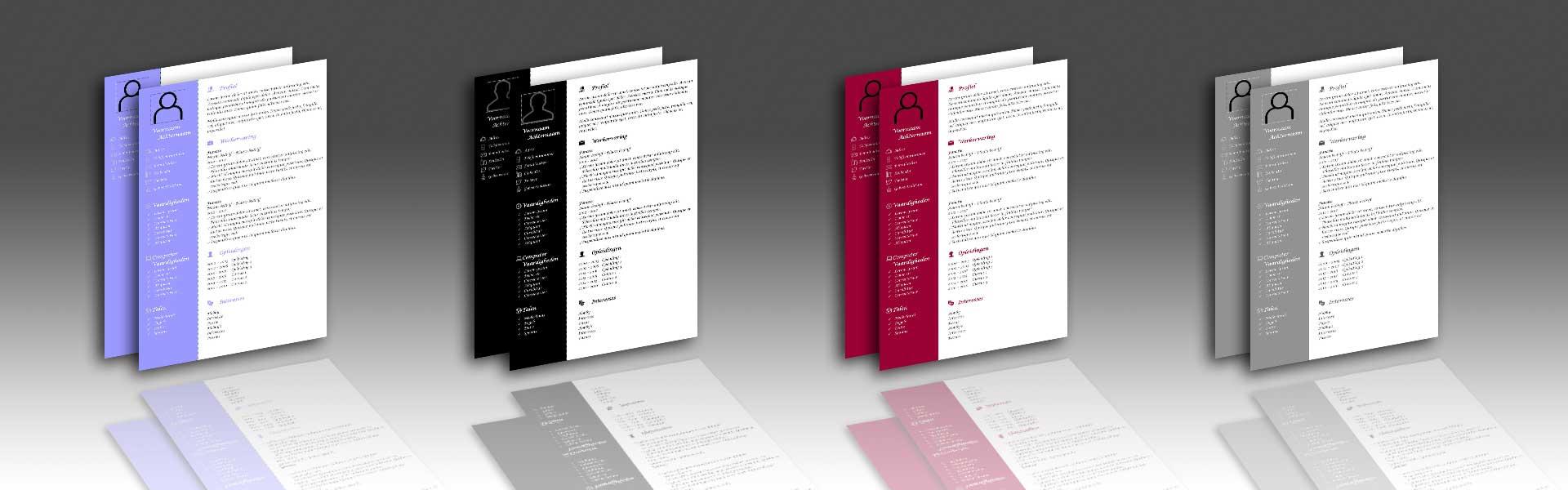 Cv en Solliciteren - Bowie Webdesign - Website op maat