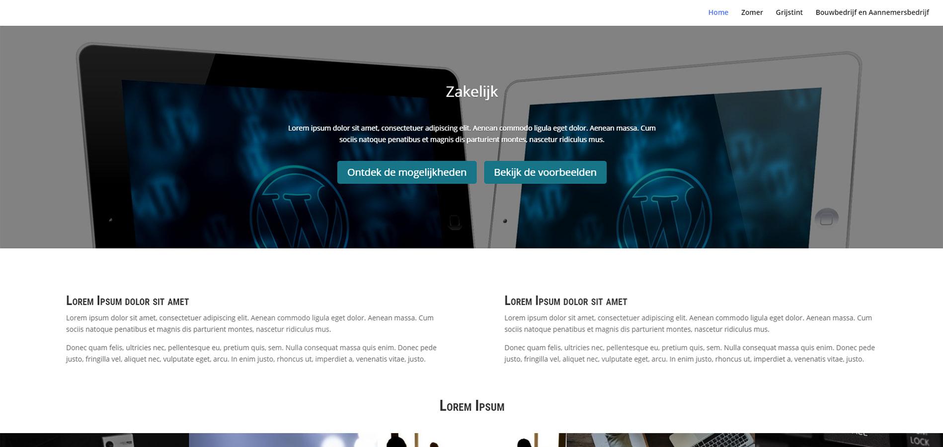 dcc22b49432 Template Website | Flexibel Zakelijk | Volledig naar wens aan te passen