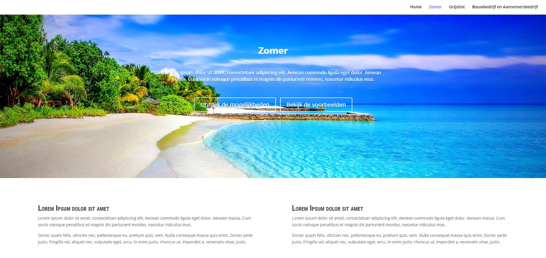 Voorbeeld van template Zomer website